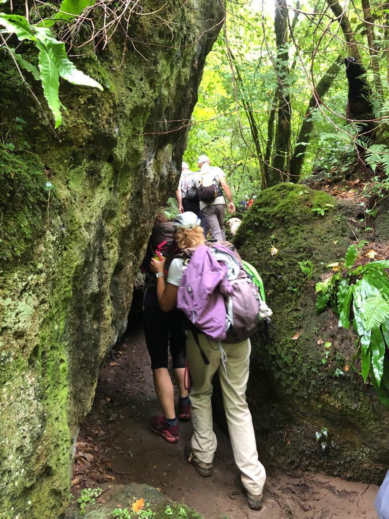 il gruppo attraversa un tratto impervio nel bosco