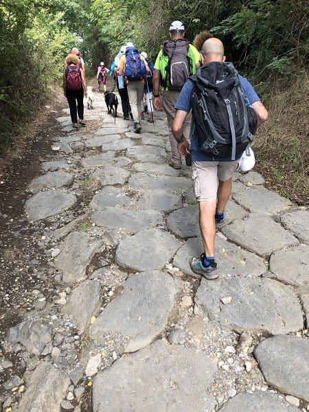 il gruppo, compatto, cammina verso Montefiascone