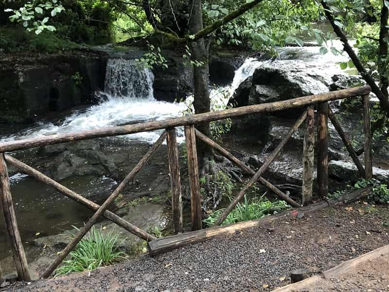 una bellissima cascata nel bosco