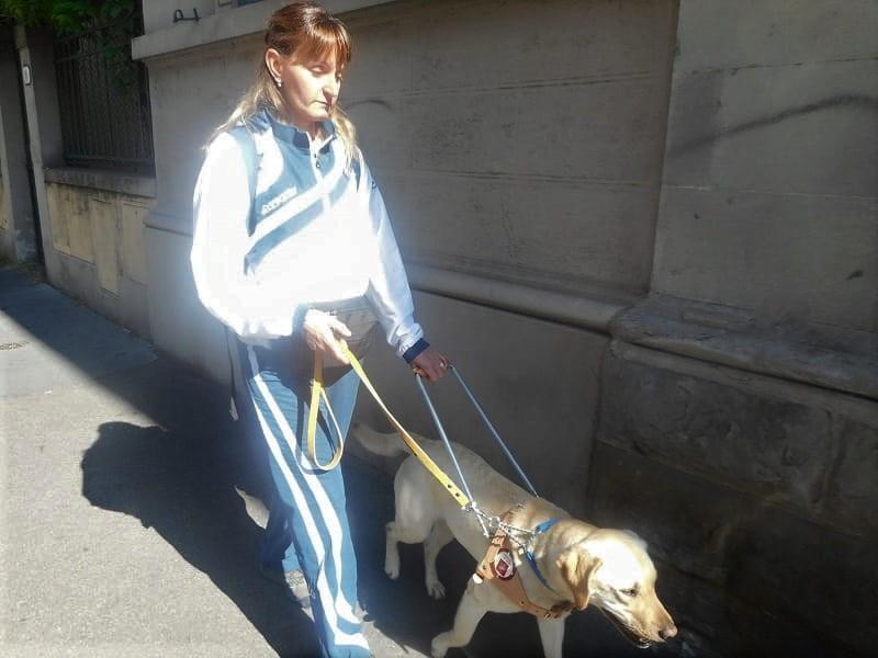 Nell'immagine Fucsia, cane guida labrador, conduce Daniela dentro la città